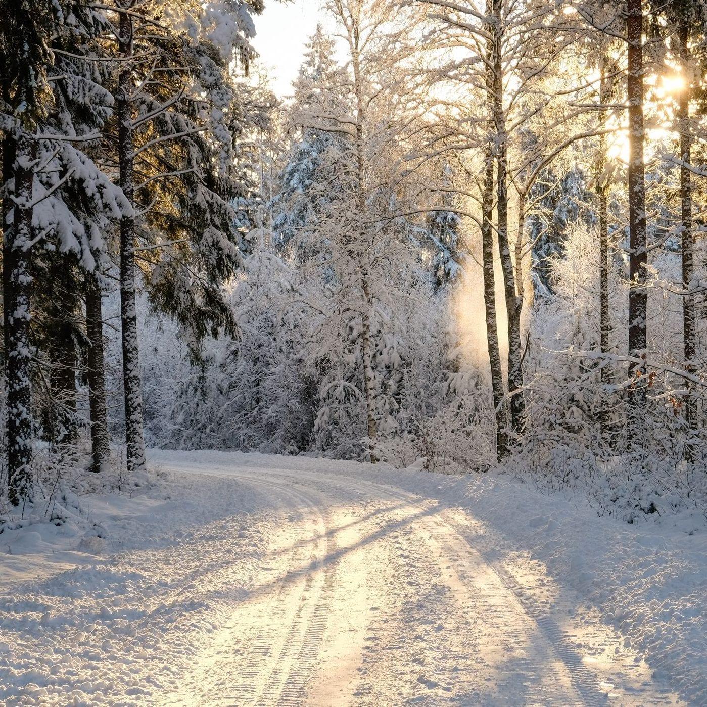 Winter e1586020020424